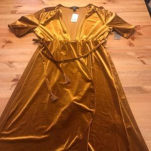 NWT velvet party dress